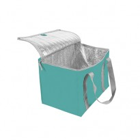 "SAC ISOTHERM ""CARREMENT GIVRE"""